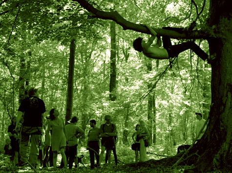 verzetten struiken bomen hoger